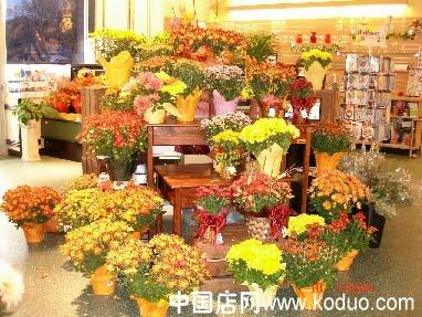 花店内部图片素材