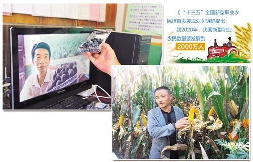 吉林省榆树市五棵树镇长新村种粮大户李军去年